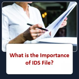What is the Importance of IDS File?
